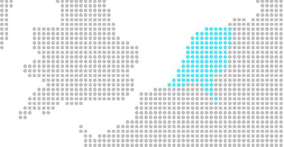 Holandés, idioma de Holanda, conocida por su capital, Amsterdam